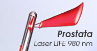 Prostate Laser Therapy.  HoLEP Holmium laser Enucleation of the Prostate, PVP Photoselective vaporisation of the Prostate